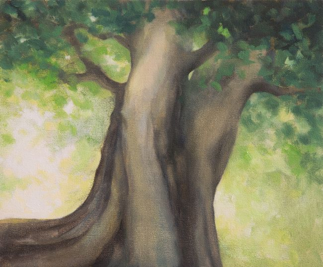 Oil painting of tree - Beech Tree