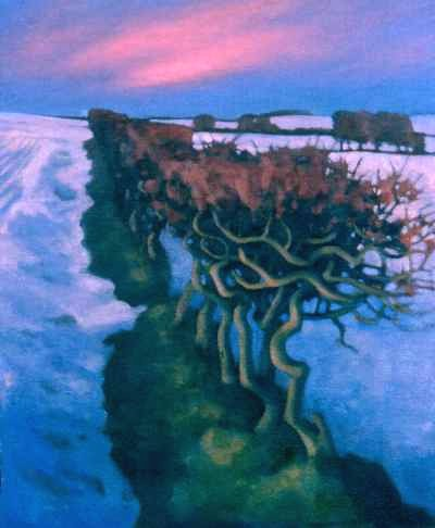 Oil painting of hedge - By the Earthhouse, Ardestie
