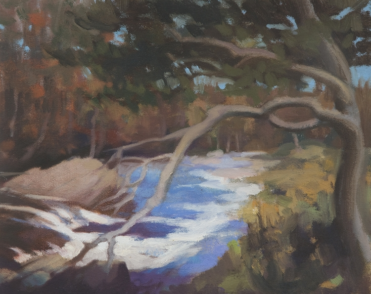 Trees and Waterfall oil painting - Falls at Killin 2