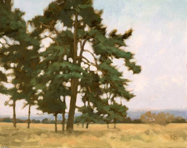Oil Sketch of Pine Trees - Painting of Scots Pines in Caledonian Forest