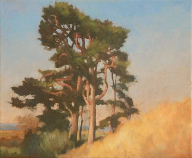 Oil painting of Tree - Pines, Landscape Painting